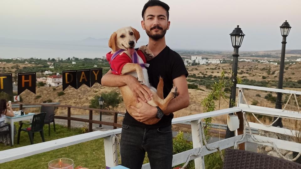 Kuzey Kıbrıs'tan evcil hayvan getirmek
